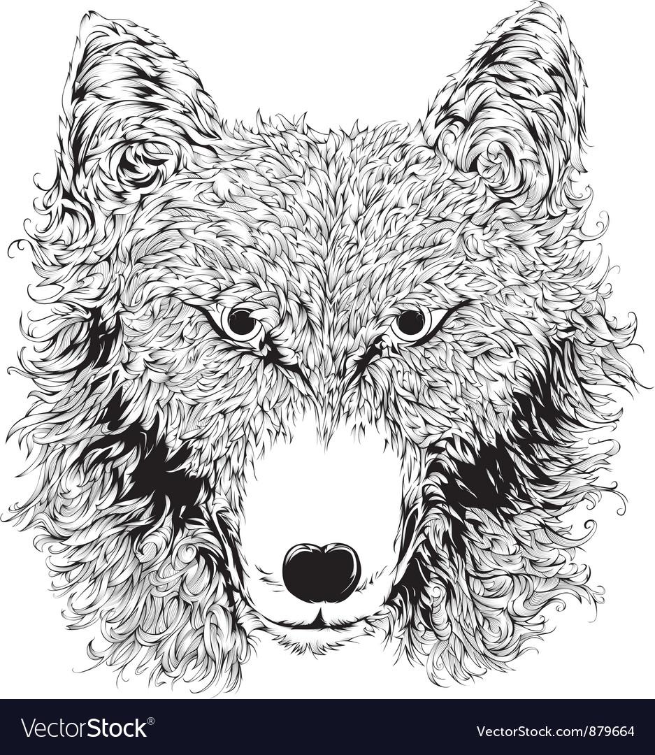 Wild wolf head vector | Price: 1 Credit (USD $1)