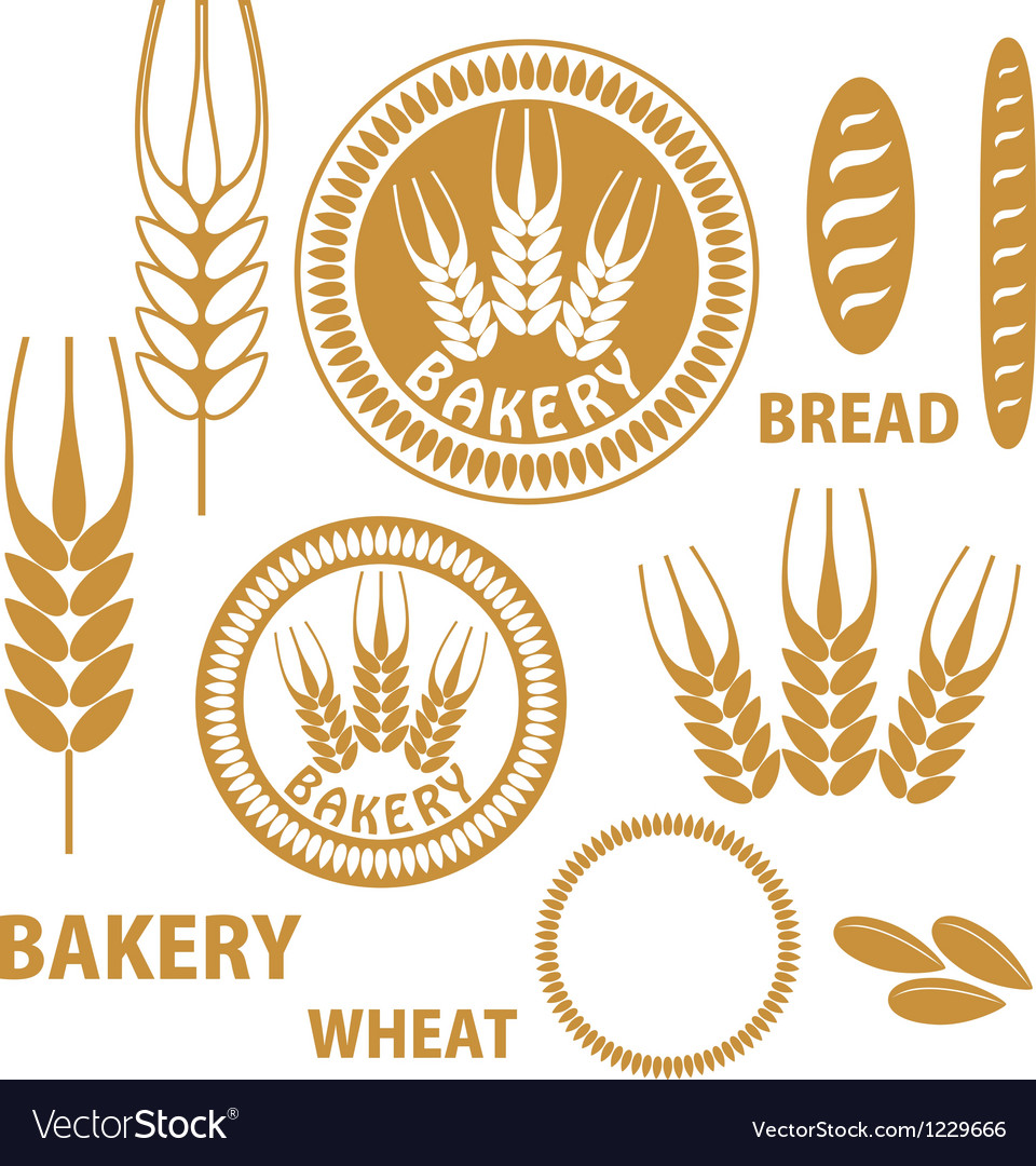 Bakery bread wheat vector | Price: 1 Credit (USD $1)