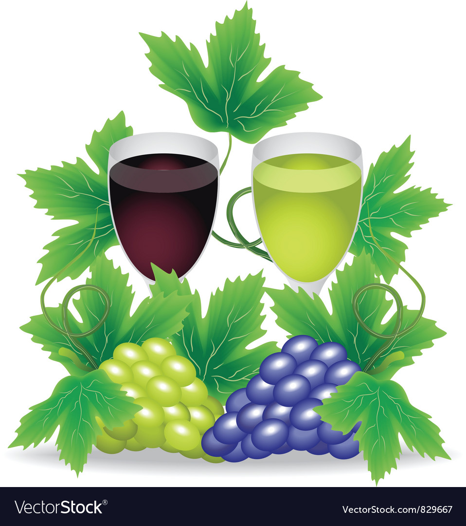 Glasses of red and white wine grapes on the vector | Price: 1 Credit (USD $1)
