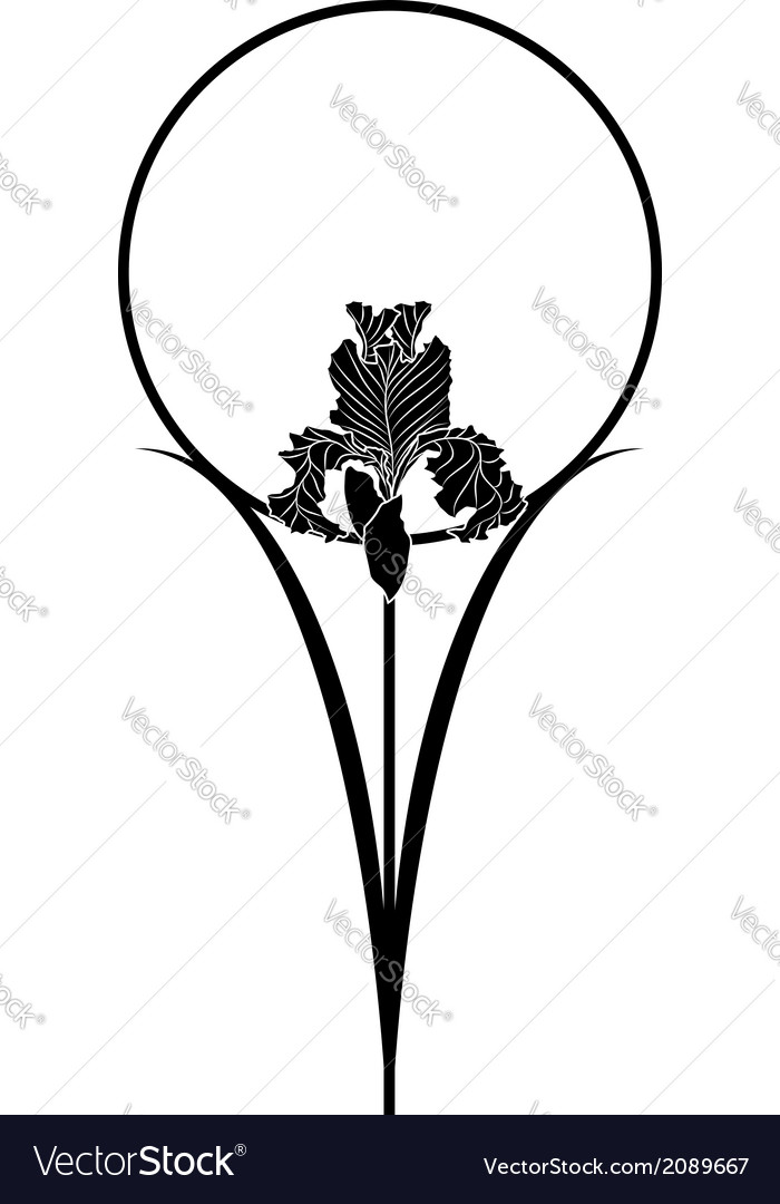 Iris vector | Price: 1 Credit (USD $1)