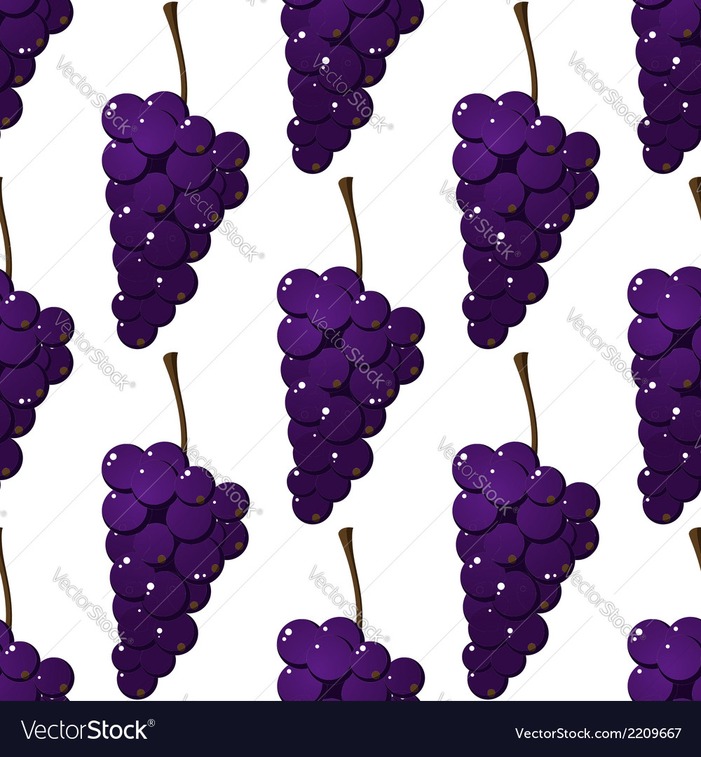 Seamless pattern of bunches of purple grapes vector | Price: 1 Credit (USD $1)
