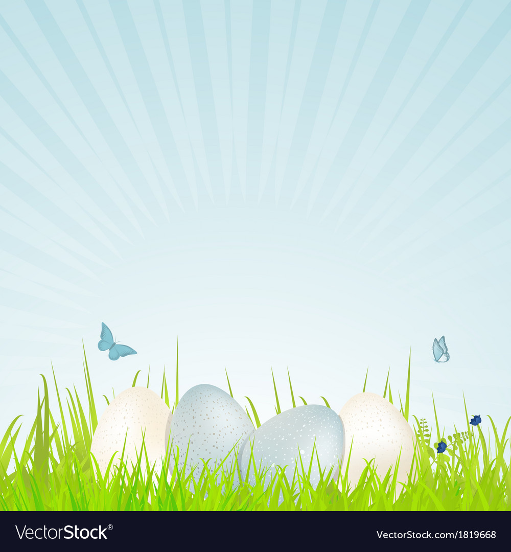 Easter white and blue speckled eggs vector | Price: 1 Credit (USD $1)