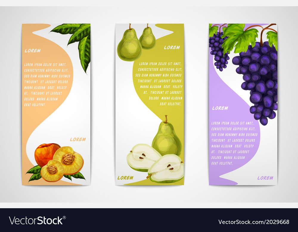 Mixed organic fruits banners collection vector   Price: 1 Credit (USD $1)