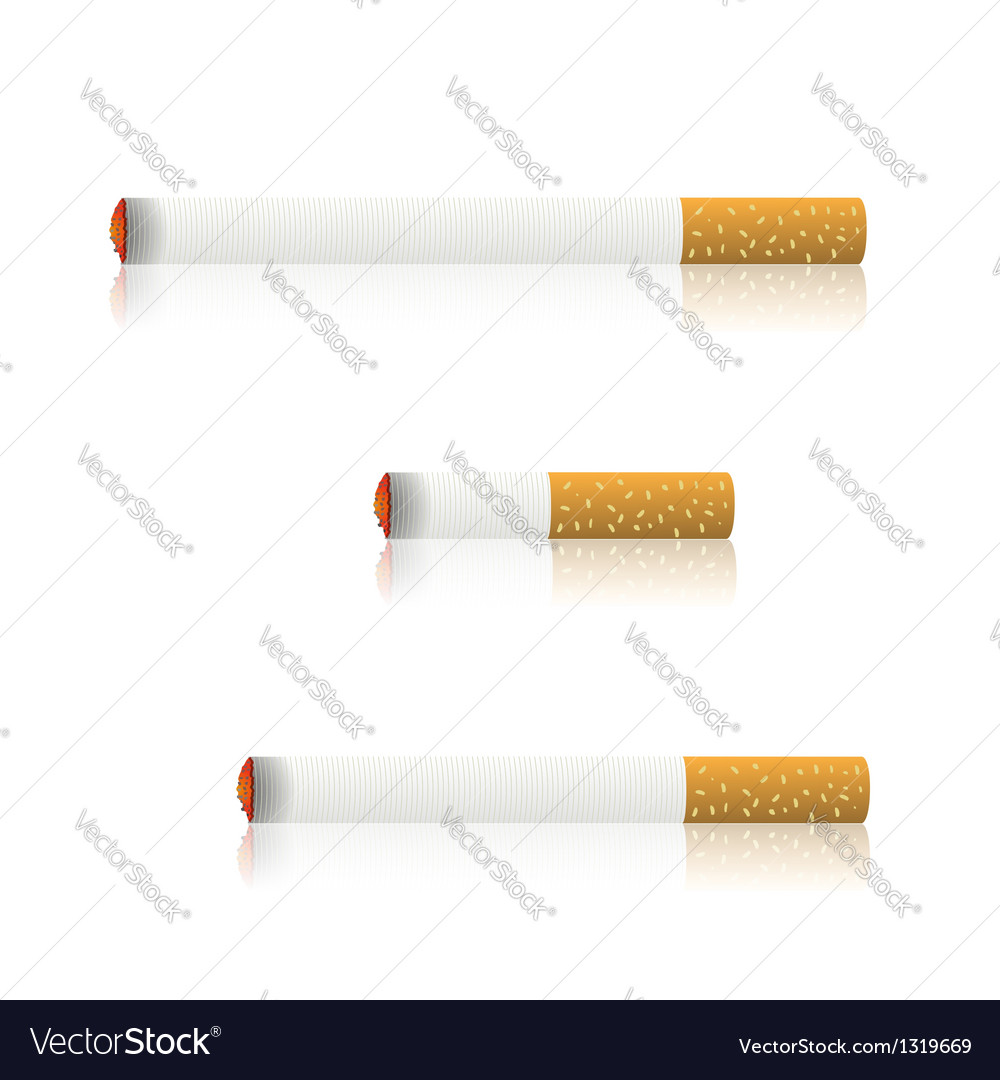 Burning cigarettes vector | Price: 1 Credit (USD $1)