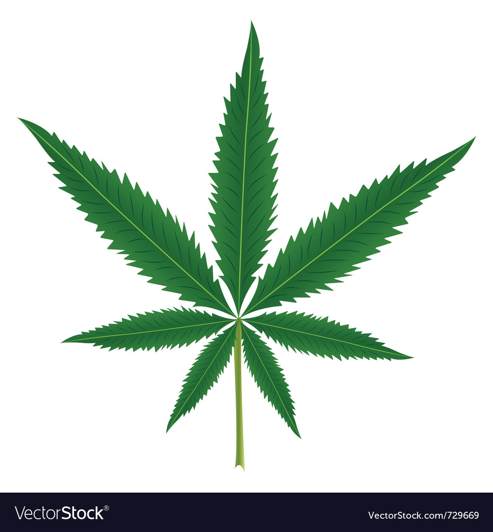 Cannabis leaf vector | Price: 1 Credit (USD $1)