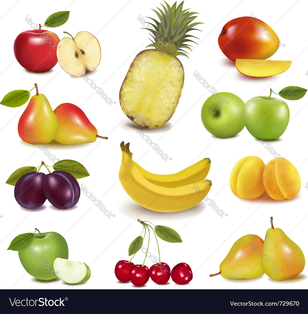 Fresh fruit vector | Price: 3 Credit (USD $3)