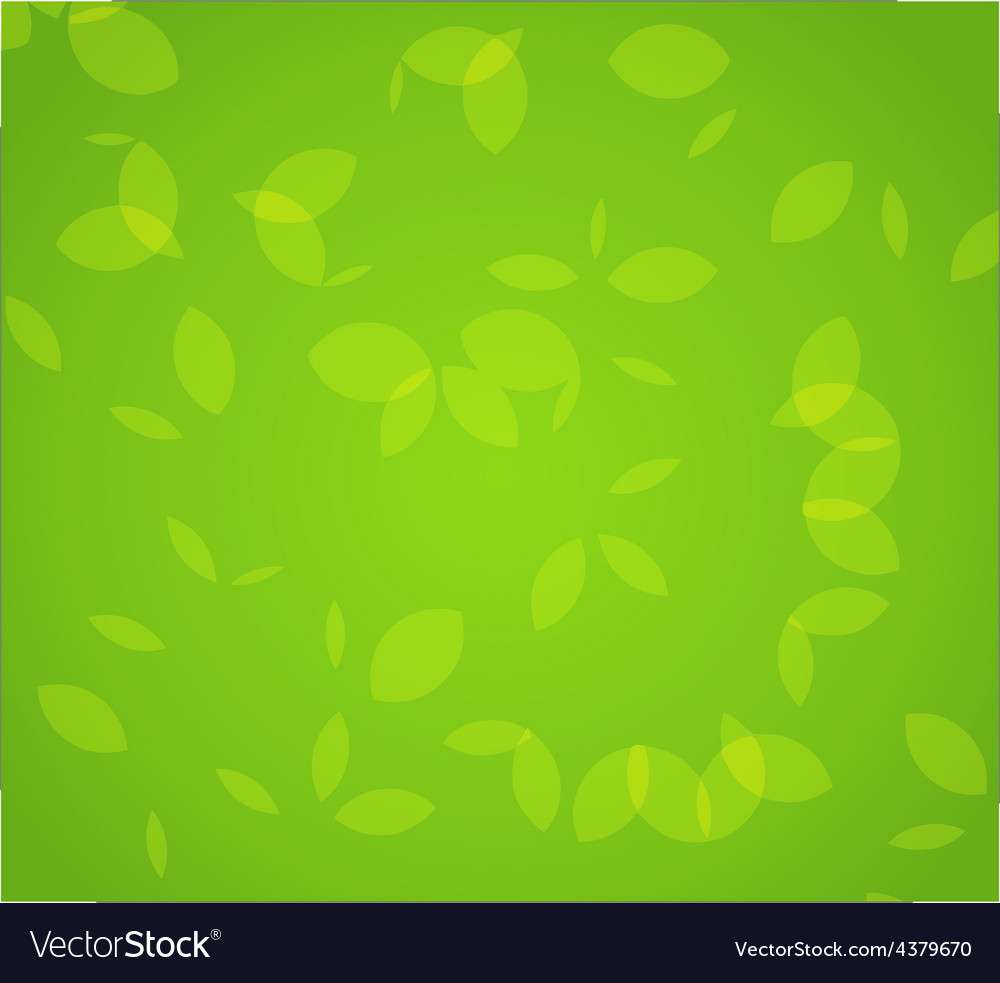 Green foliage vector | Price: 1 Credit (USD $1)