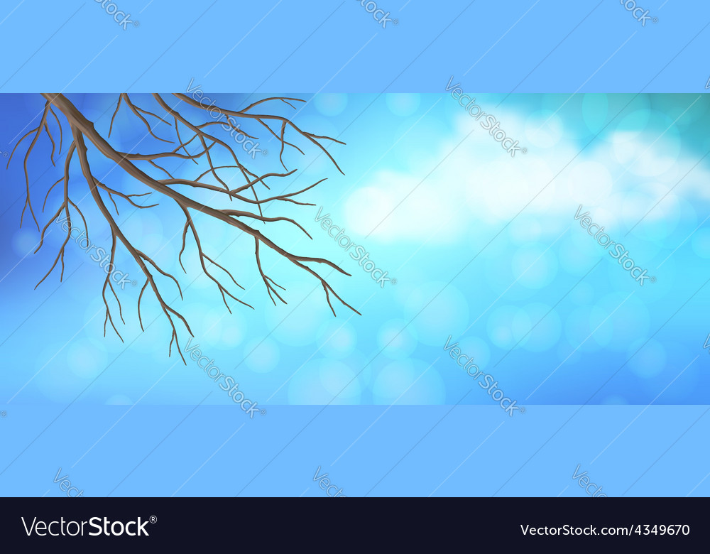 Sky tree branches panoramic banner vector | Price: 1 Credit (USD $1)