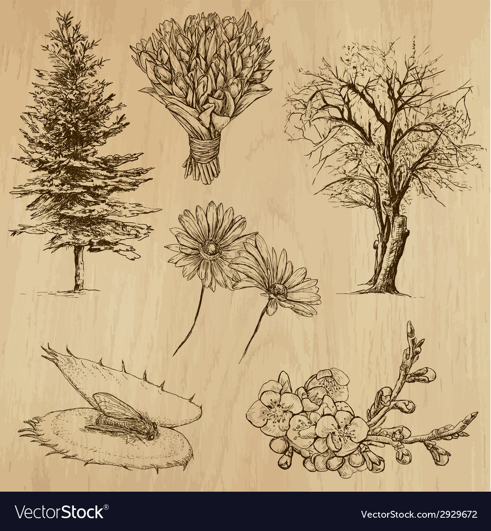 Flowers and trees - an hand drawn vector | Price: 1 Credit (USD $1)