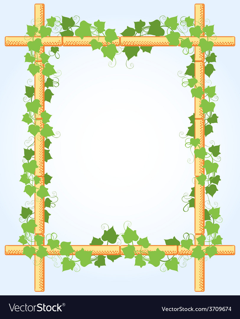 Ivy around bamboo border vector | Price: 1 Credit (USD $1)