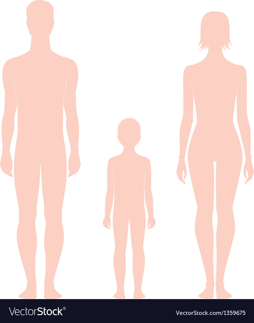 Human figure vector   Price: 1 Credit (USD $1)