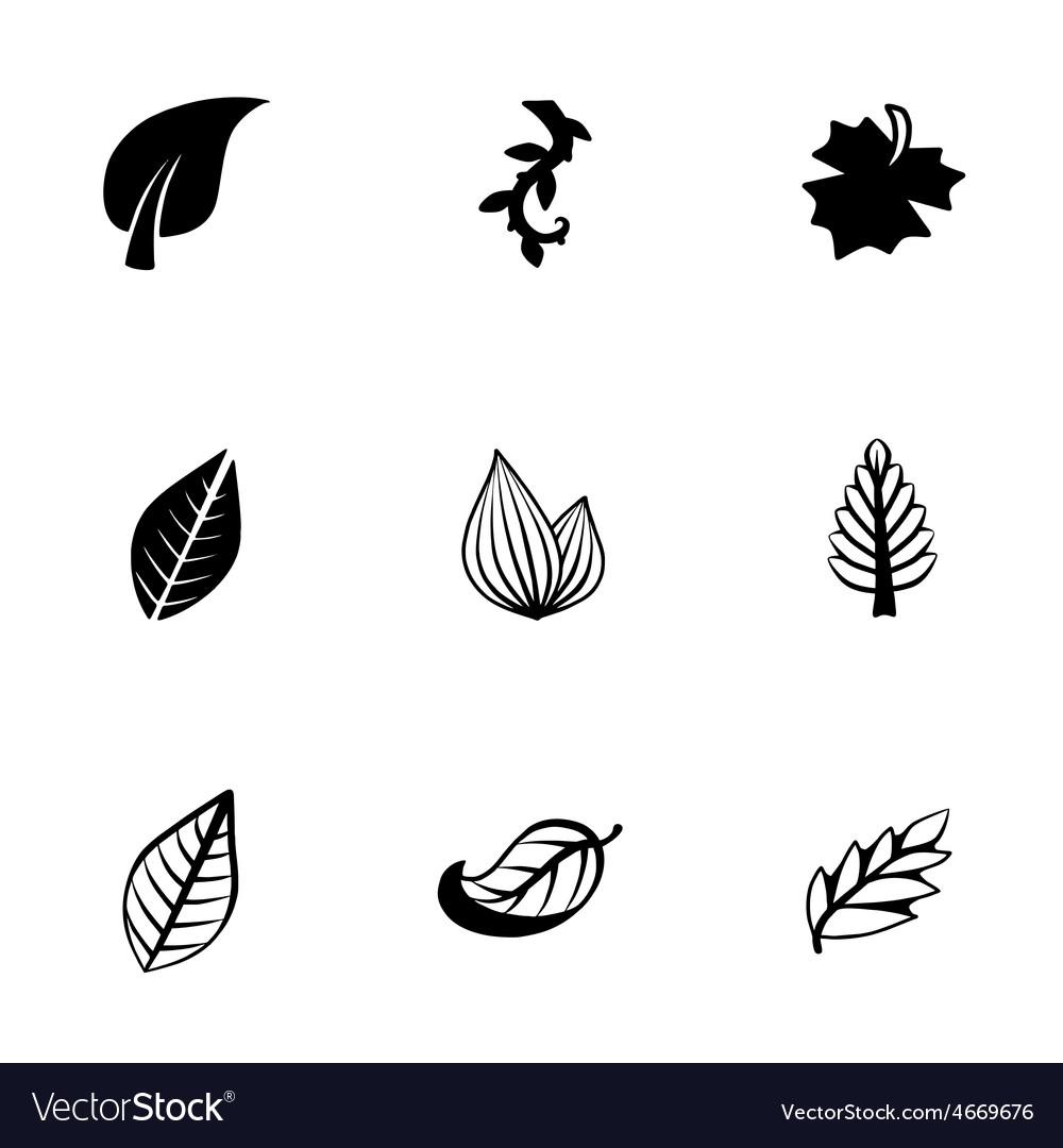 Leaf icon set vector   Price: 1 Credit (USD $1)