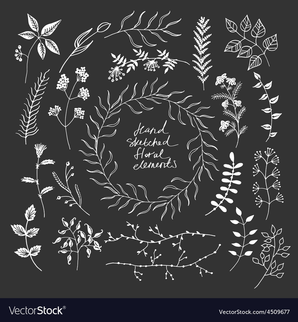 Hand sketched floral elements vector | Price: 1 Credit (USD $1)