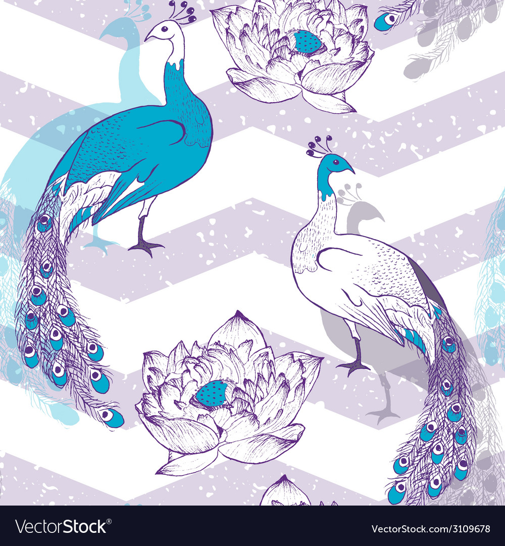 Seamless pattern with peacock birds in vector | Price: 1 Credit (USD $1)