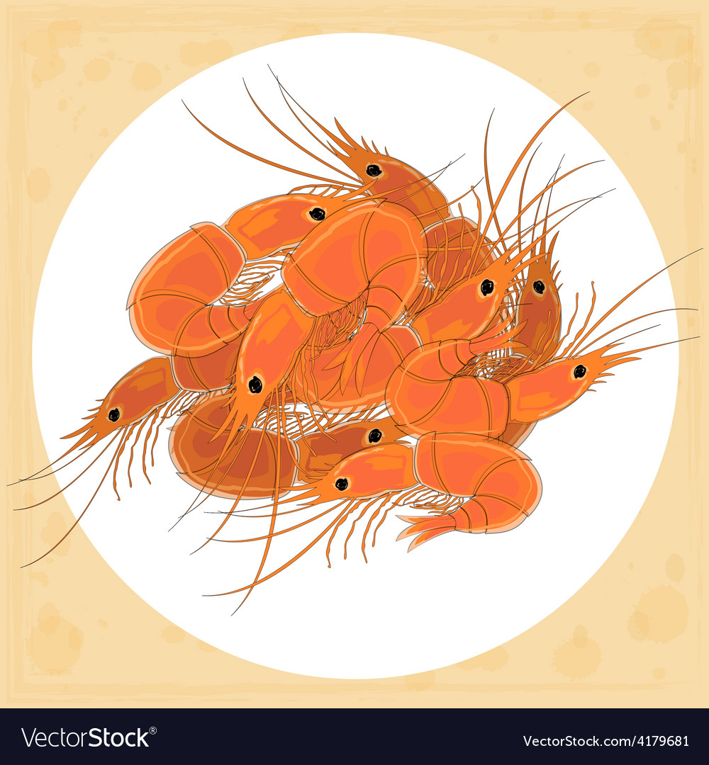 Prepared shrimp on the white plate vector | Price: 1 Credit (USD $1)
