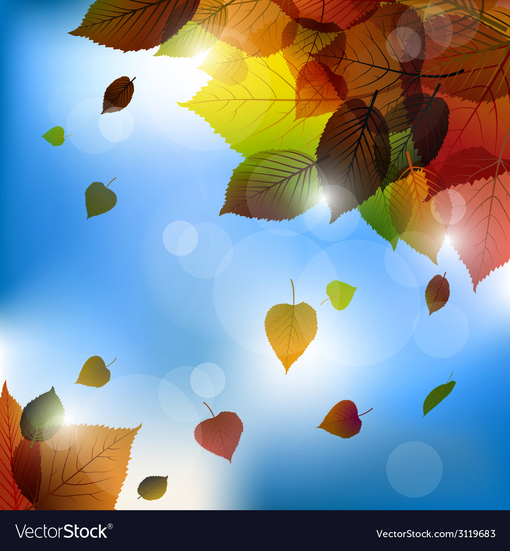 Autumn leafs background- fall with back ligh vector | Price: 1 Credit (USD $1)