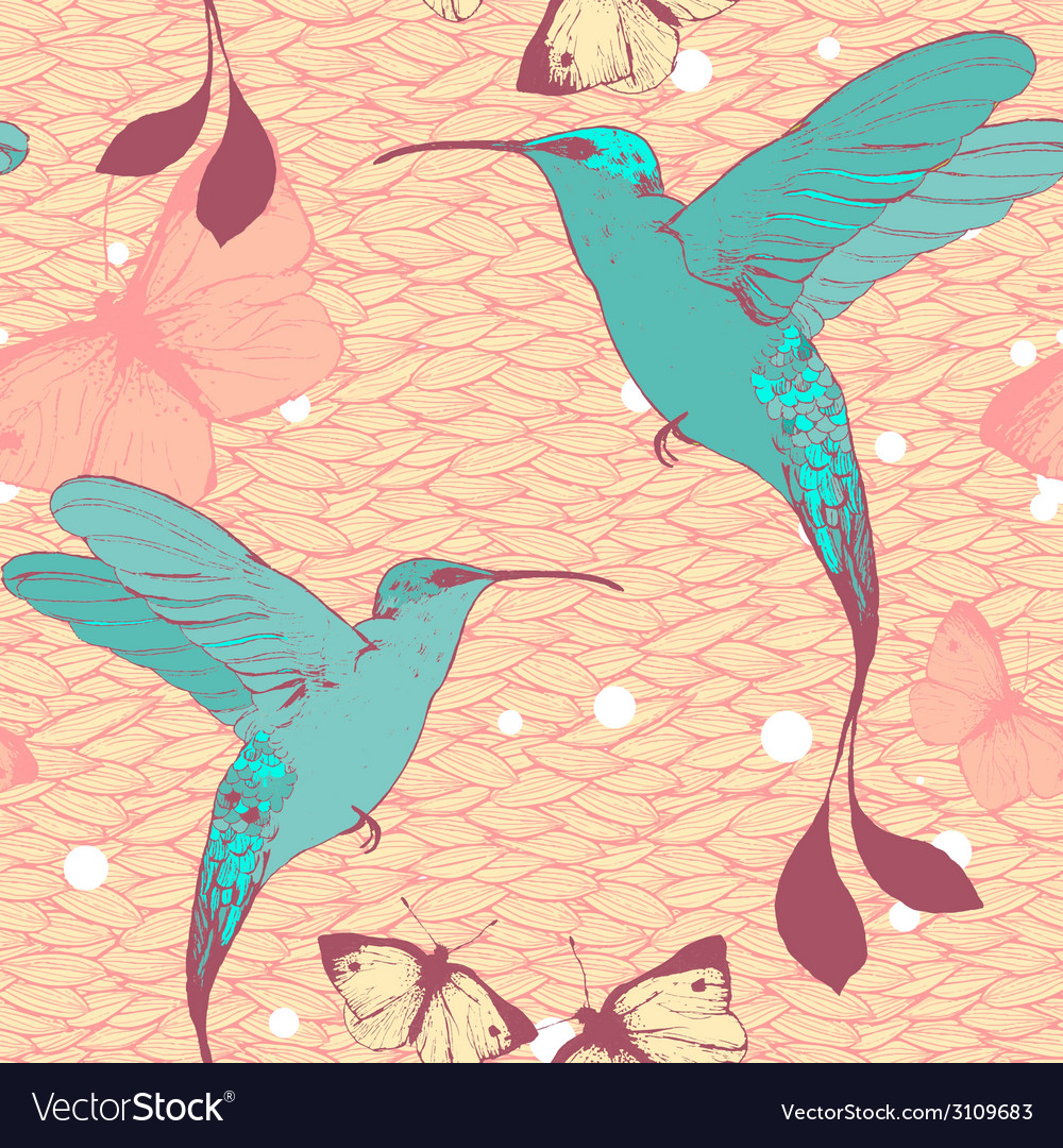 Bright pattern with colibri birds and butterflies vector | Price: 1 Credit (USD $1)