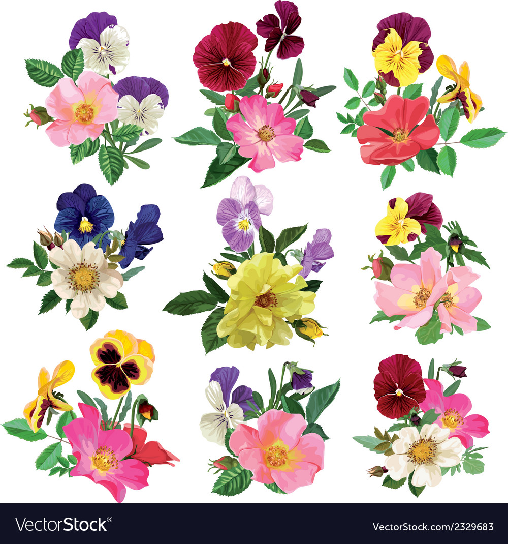 Set of the pansy and roses vector | Price: 1 Credit (USD $1)