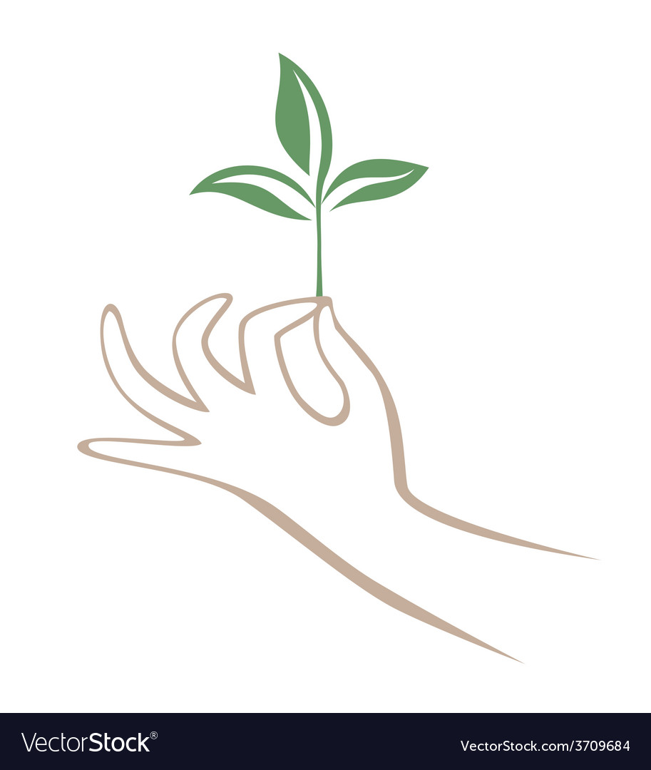 Hand and branch vector | Price: 1 Credit (USD $1)