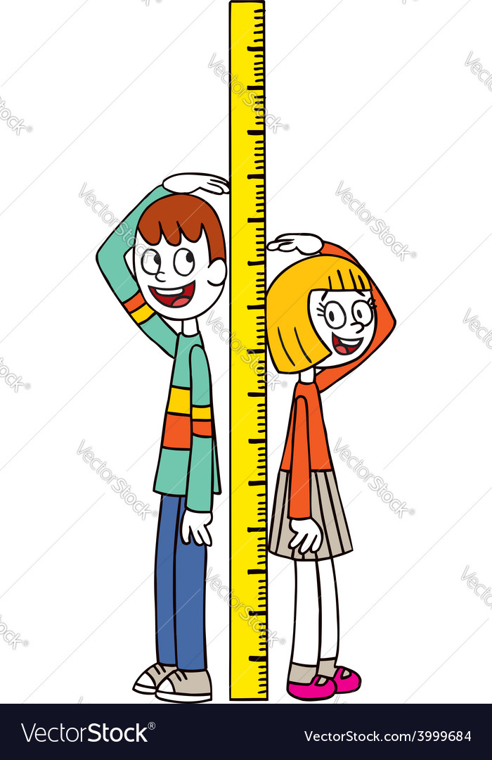 Height measure vector | Price: 1 Credit (USD $1)