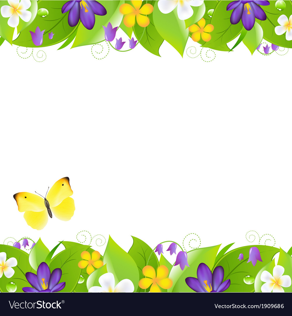 Summer flowers borders vector | Price: 1 Credit (USD $1)