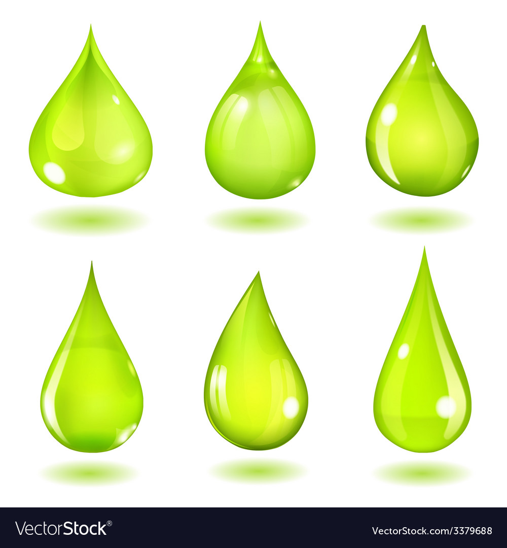 Green drops vector | Price: 1 Credit (USD $1)