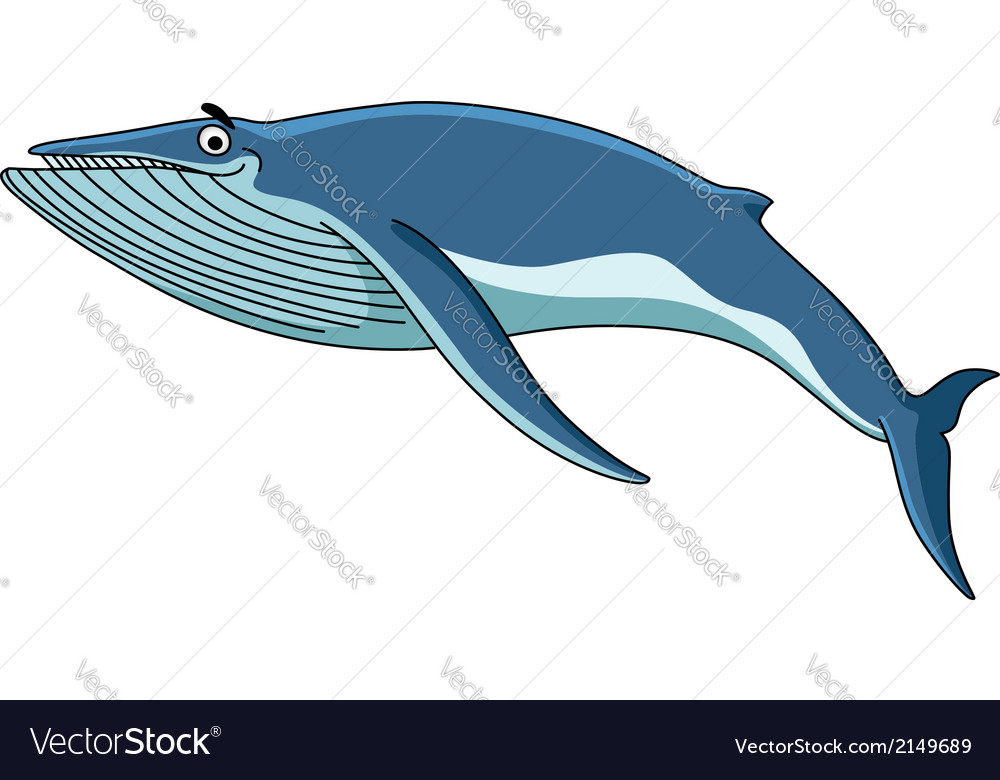 Big blue baleen whale vector | Price: 1 Credit (USD $1)