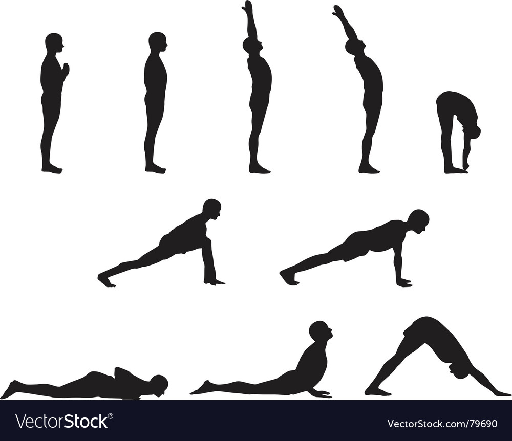 Yoga basics vector | Price: 1 Credit (USD $1)