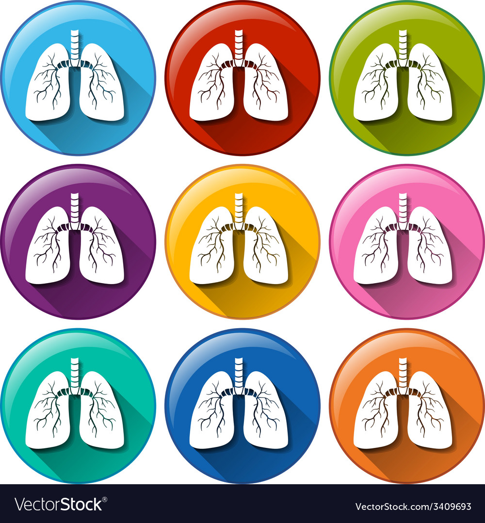 Buttons with lung organ vector | Price: 1 Credit (USD $1)