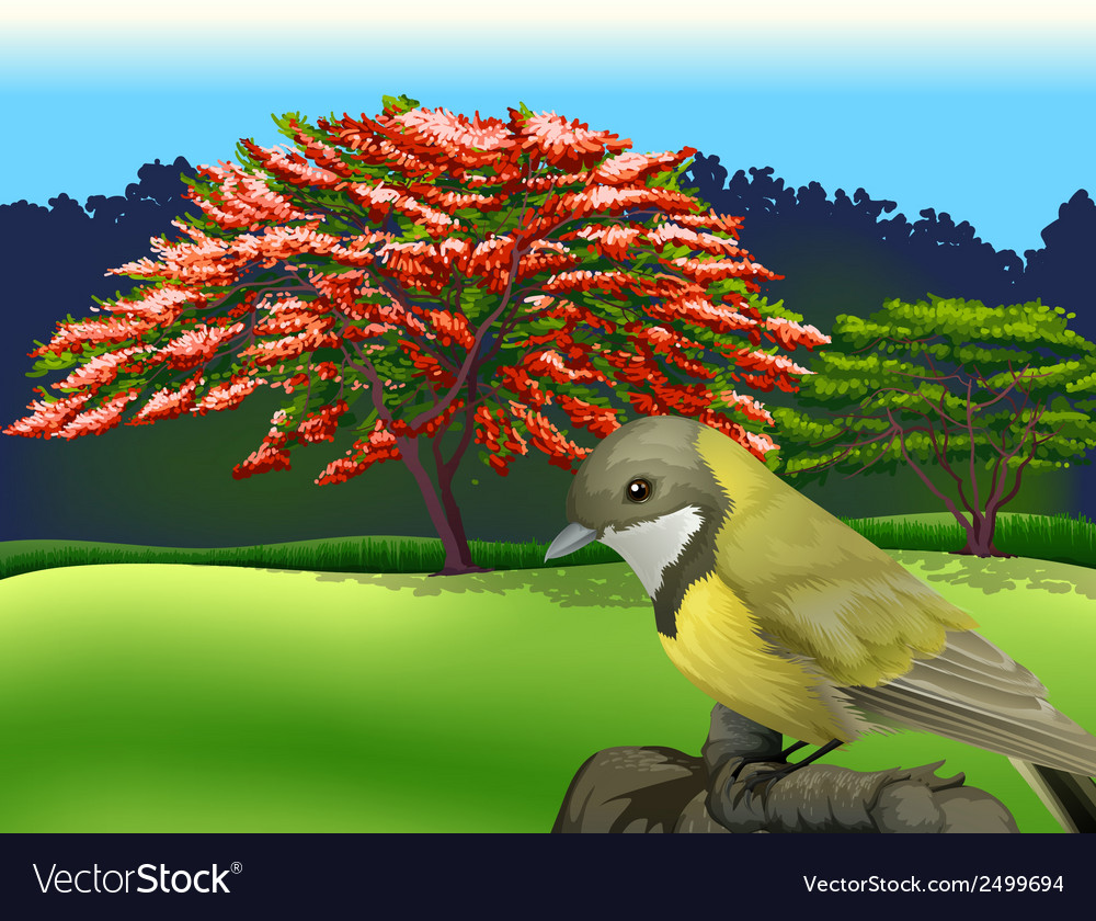 A bird at the branch of a tree vector | Price: 1 Credit (USD $1)