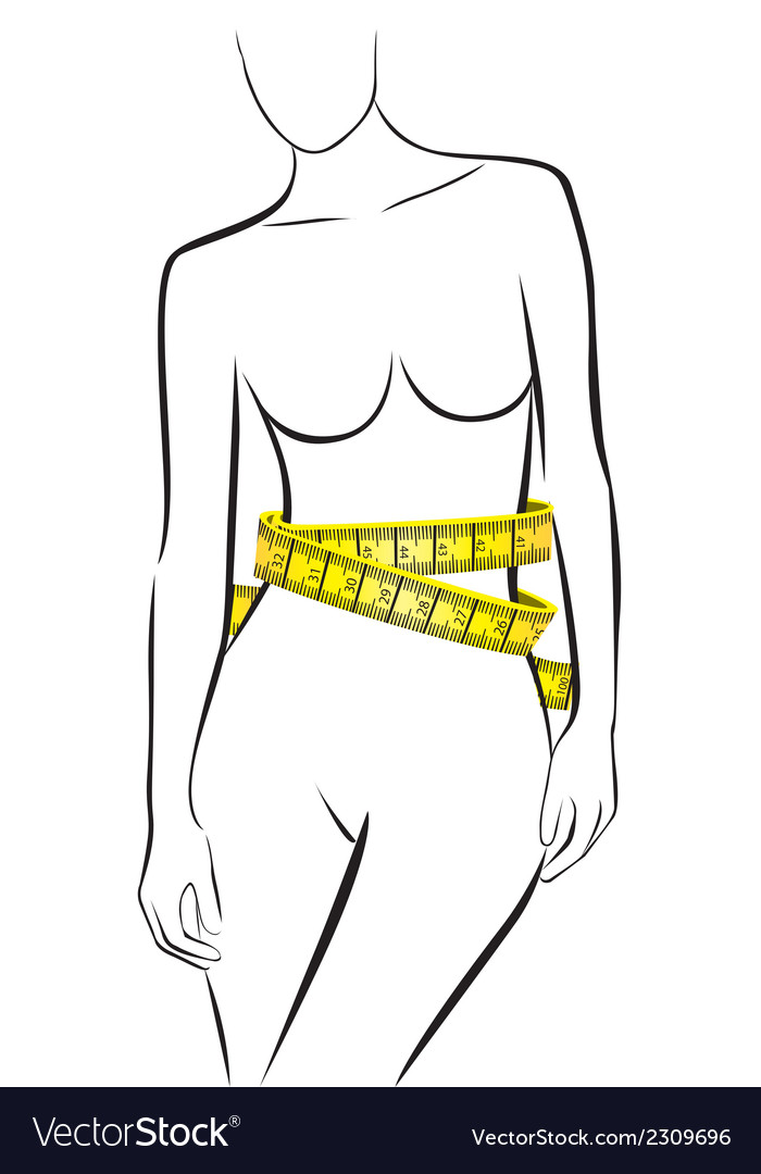 Measures in perfect female body isolated on white vector | Price: 1 Credit (USD $1)