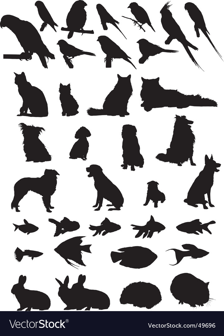 Pet silhouettes vector | Price: 1 Credit (USD $1)