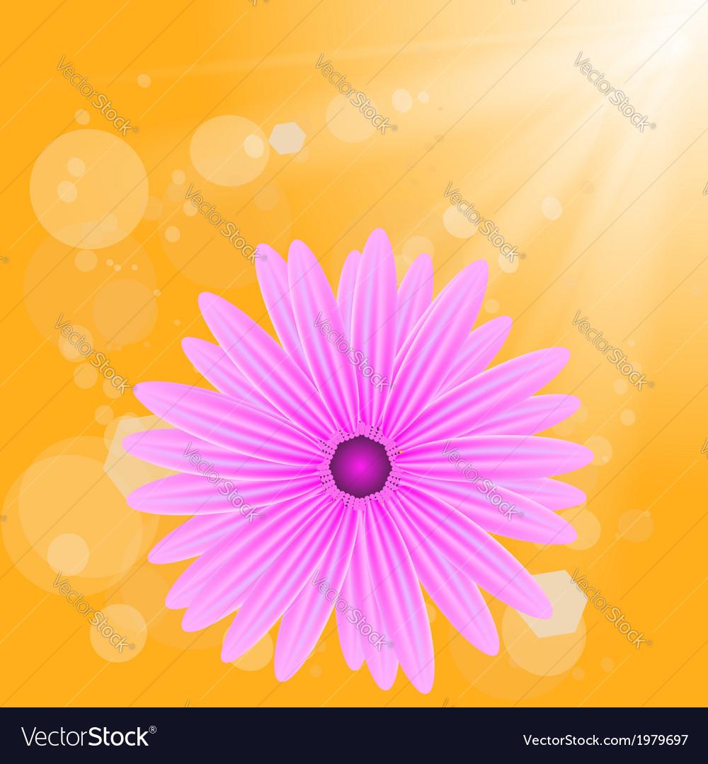 Flower on sun background vector | Price: 1 Credit (USD $1)
