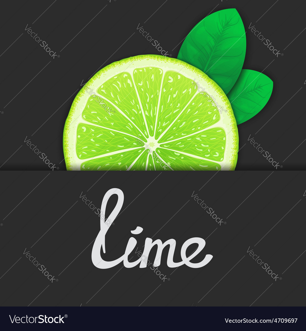 Just of lime vector | Price: 1 Credit (USD $1)