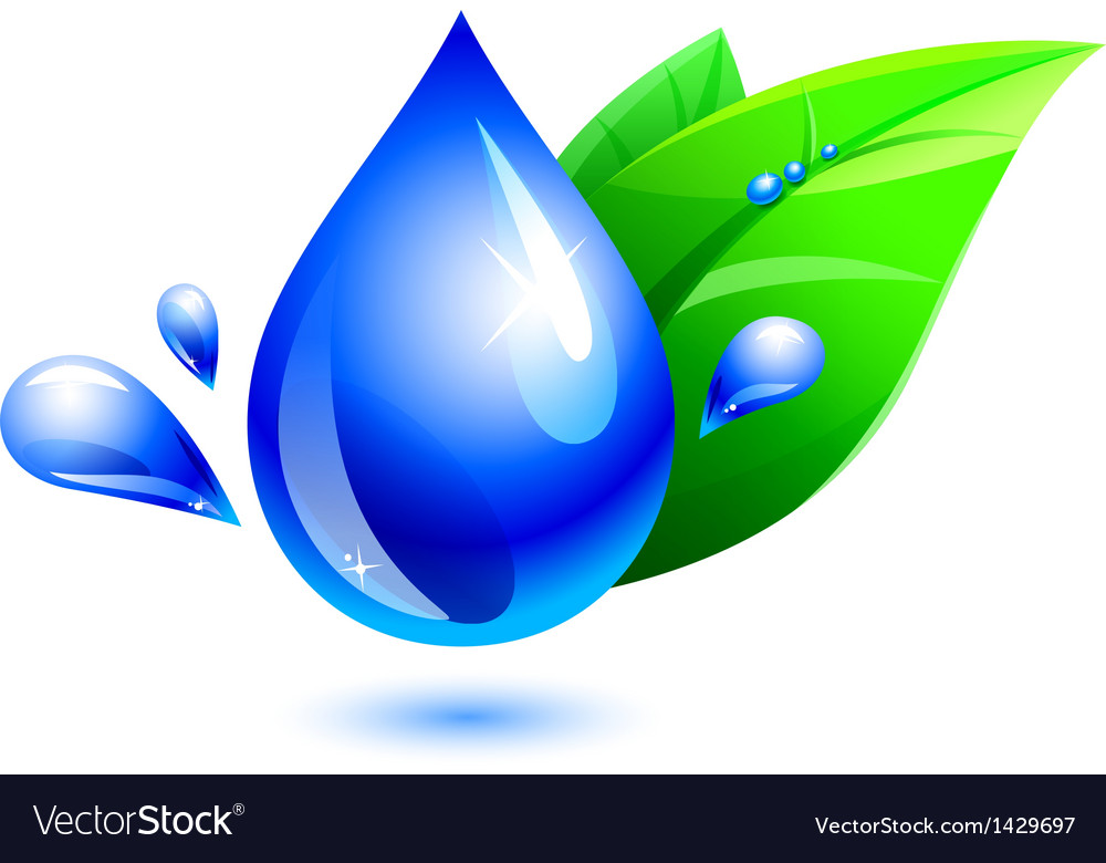 Water drop and leaf vector | Price: 1 Credit (USD $1)