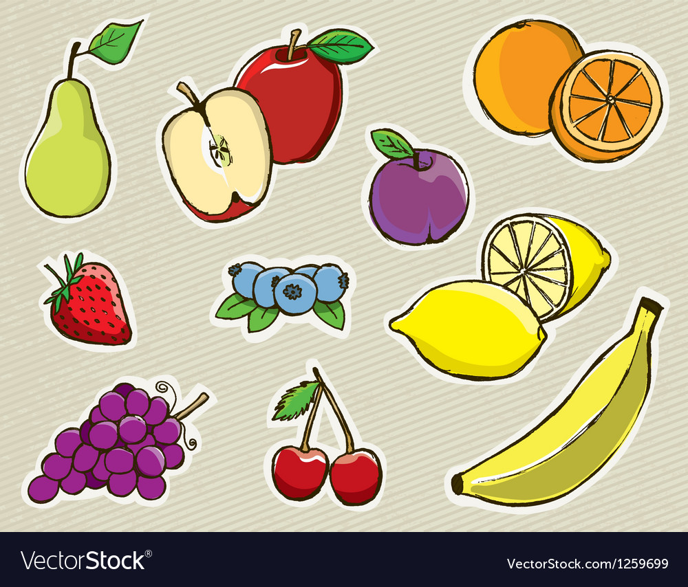 Hand drawn fruit vector | Price: 1 Credit (USD $1)