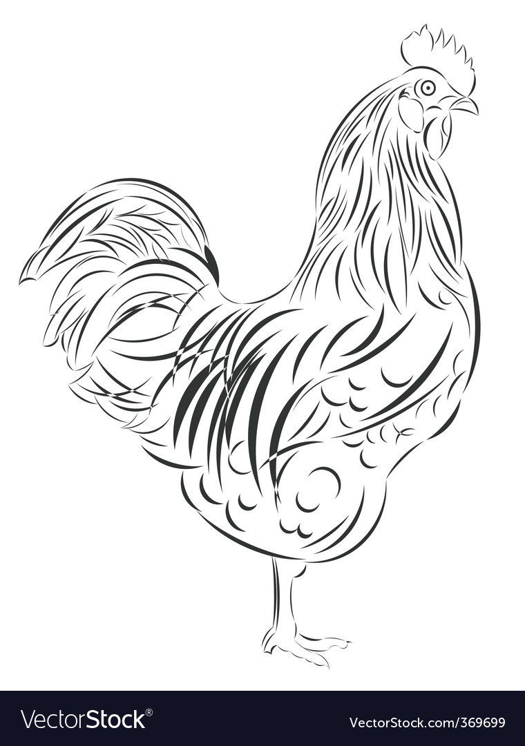 sketch of the cock vector | Price: 1 Credit (USD $1)