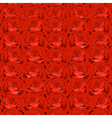 Background with red roses vector
