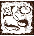 Ocean fish set vector