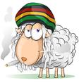 Crazy jamaican sheep cartoon vector
