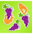 Sticker with hand holding grapes vector