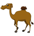 Cute brown camel cartoon vector