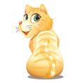 A backview of an orange cat vector
