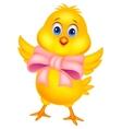 Cute baby chicken cartoon vector