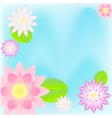 Pink lotus card background vector