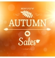 Autumn sale poster background eps 10 vector