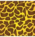 Texture of zebra animal print vector