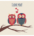Colorful with two owls in love sitting on a vector
