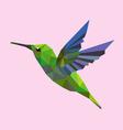 Humming bird low polygon vector
