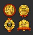 Gold guaranteed labels vector